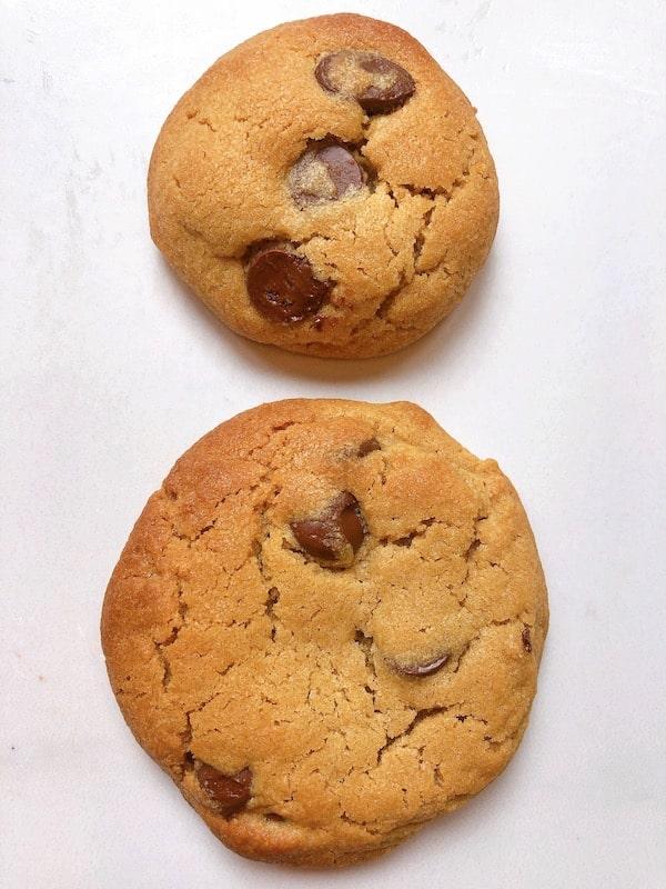 peanut butter choc chip cookie