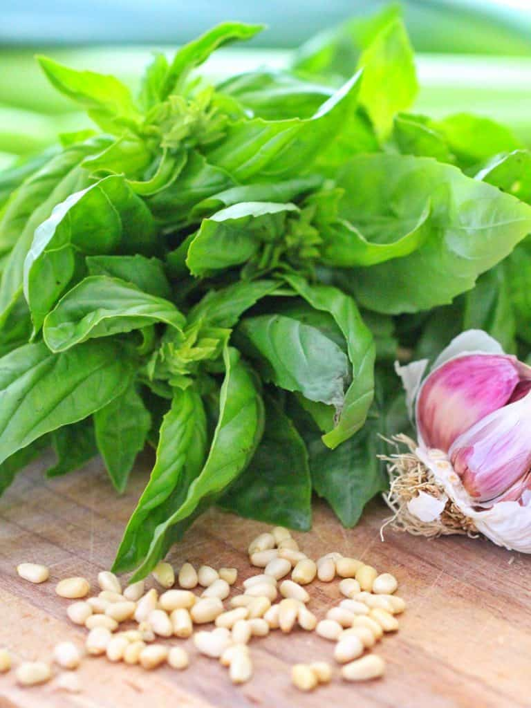 Thermomix Pesto Ingredients